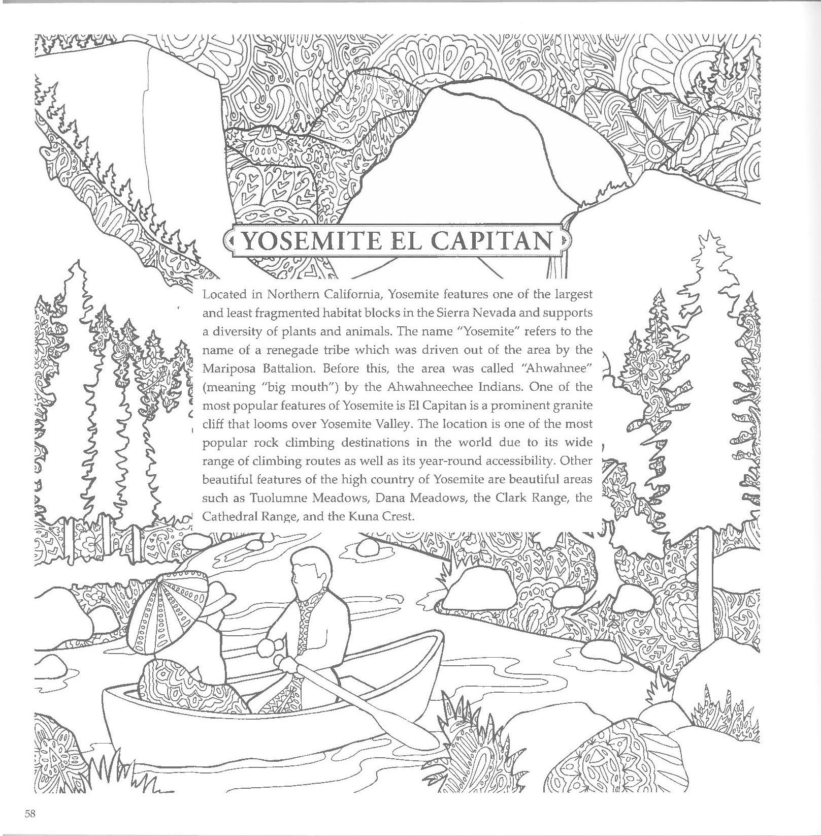 National Parks Creative Coloring Book - Yosemite Online Store ...
