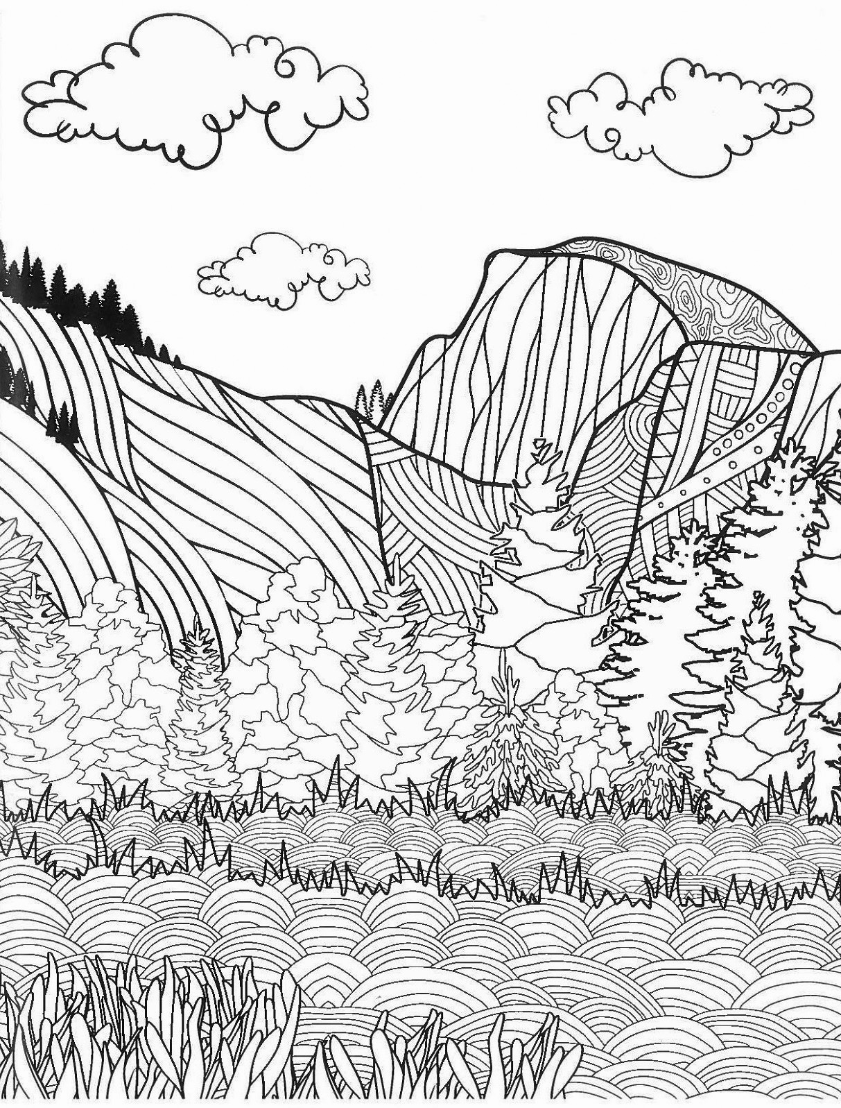 Yosemite Zen Coloring Book Yosemite Online Store Official